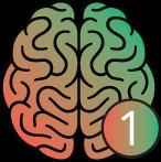 brain + nummer